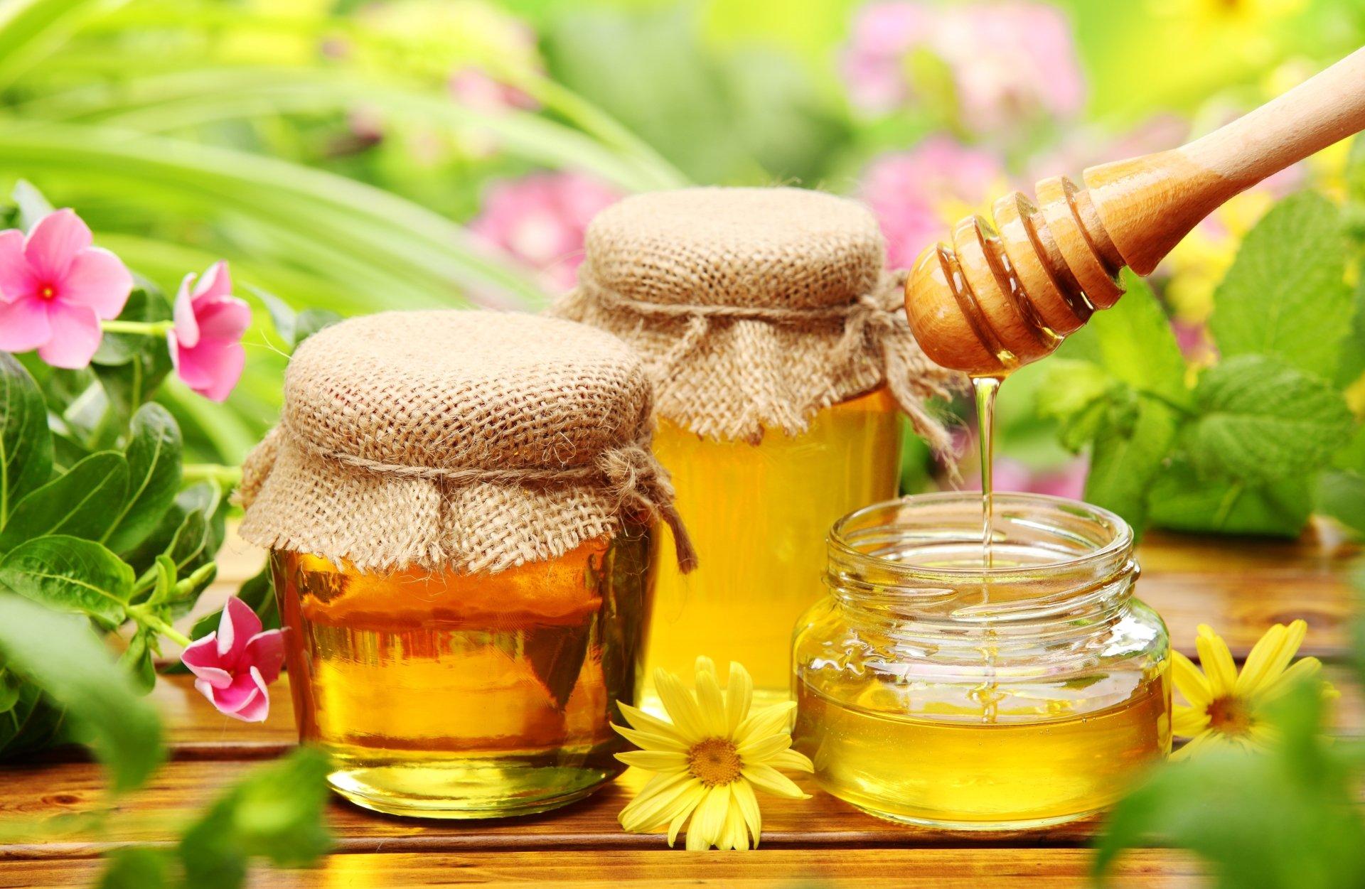 Food - Honey  Still Life Flower Wallpaper