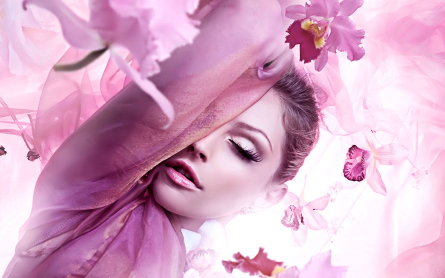 Wallpapers ID:405637