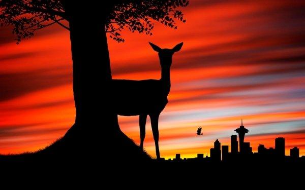 Animal Deer HD Wallpaper   Background Image