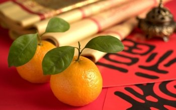 Food - Orange Wallpapers and Backgrounds ID : 407701