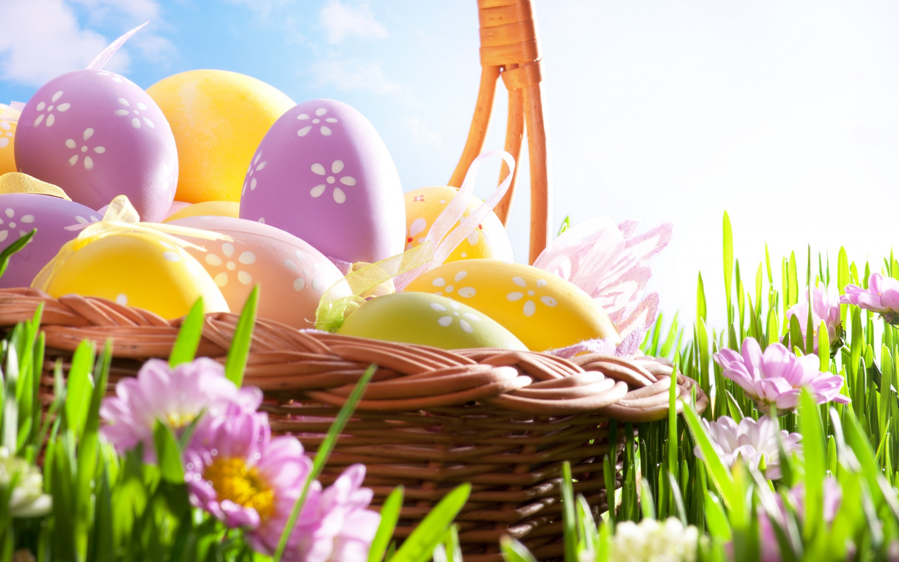 Easter Hd Wallpaper Background Image 2880x1800 Id 408392