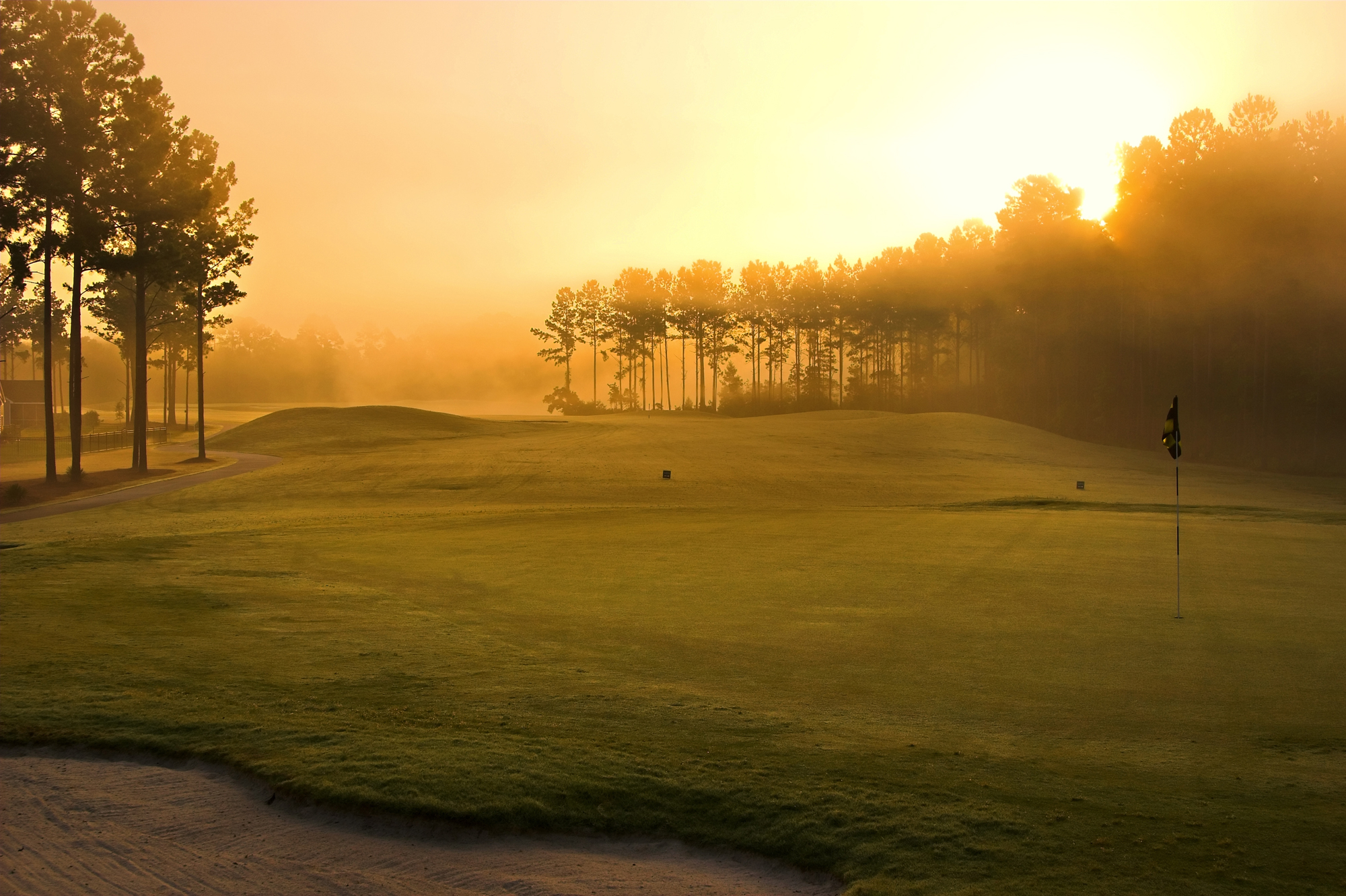 Golf Course Full HD Wallpaper And Background Image