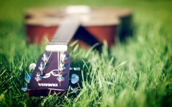Musik - Gitar Wallpapers and Backgrounds ID : 409845