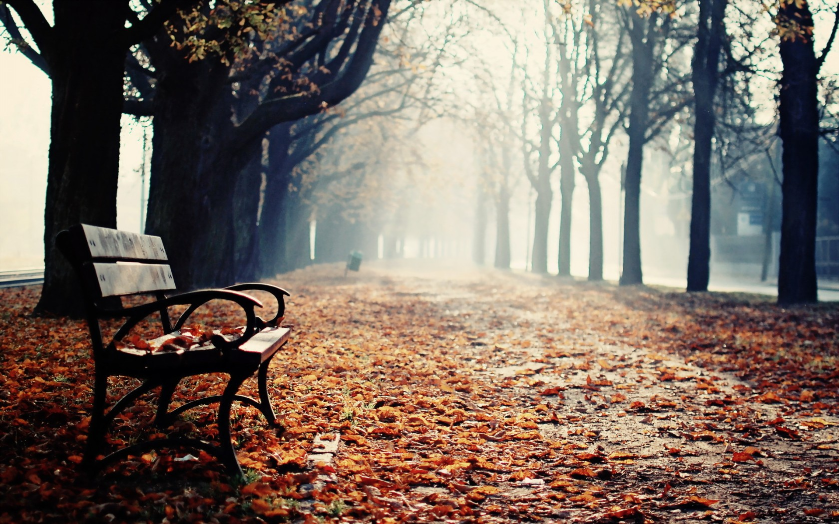 Park Benches Wallpaper And Background Image