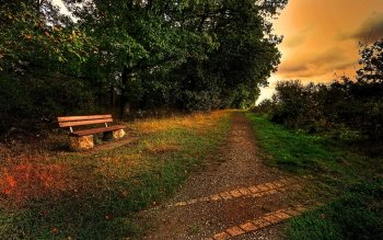 Man Made - Bench Wallpapers and Backgrounds ID : 410032
