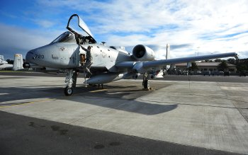 Military - Fairchild Republic A-10 Thunderbolt II Wallpapers and Backgrounds ID : 412656