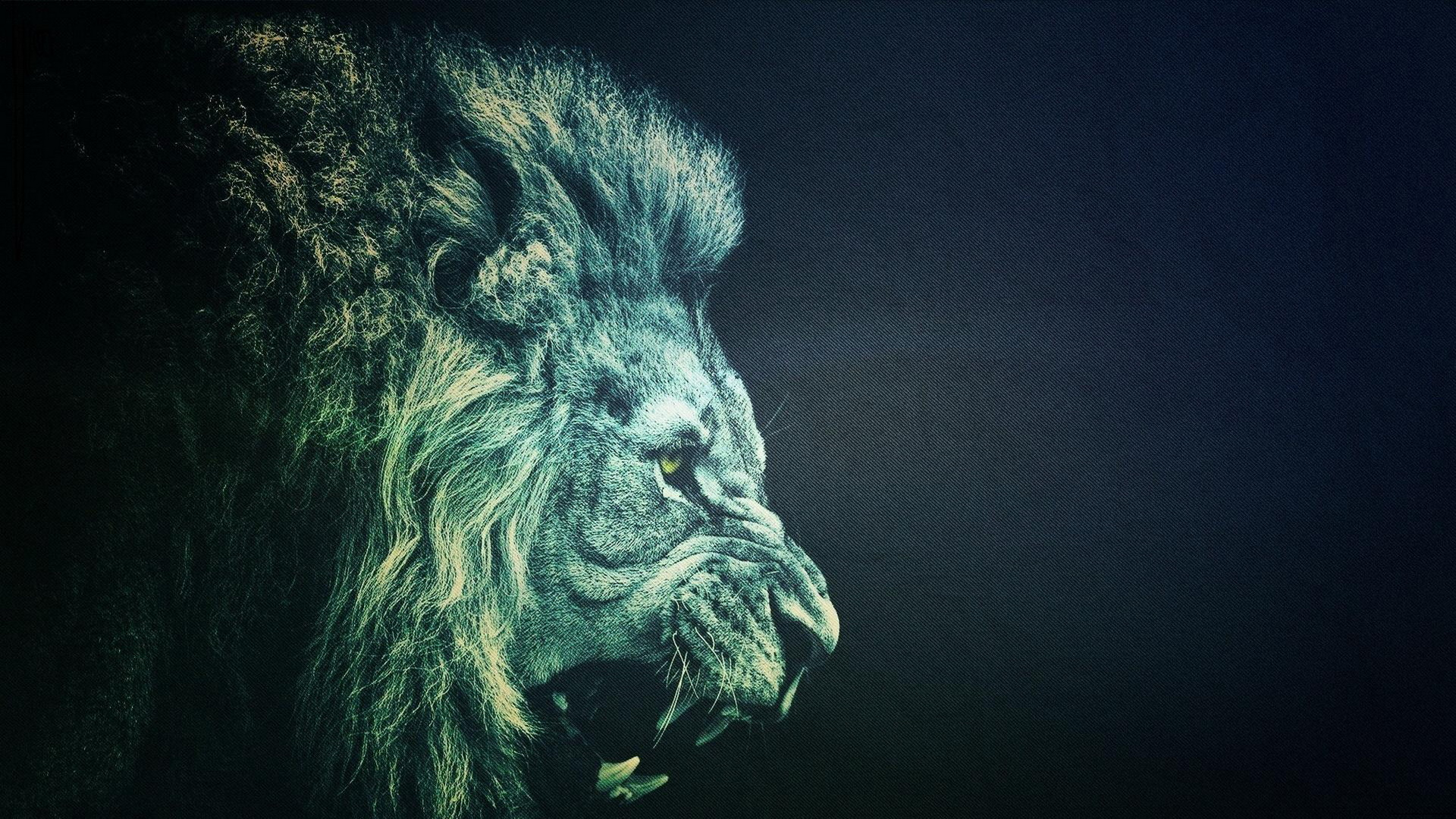 HD wallpapers iphone 5 wallpaper hd lion