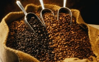 Food - Coffee Wallpapers and Backgrounds ID : 413056