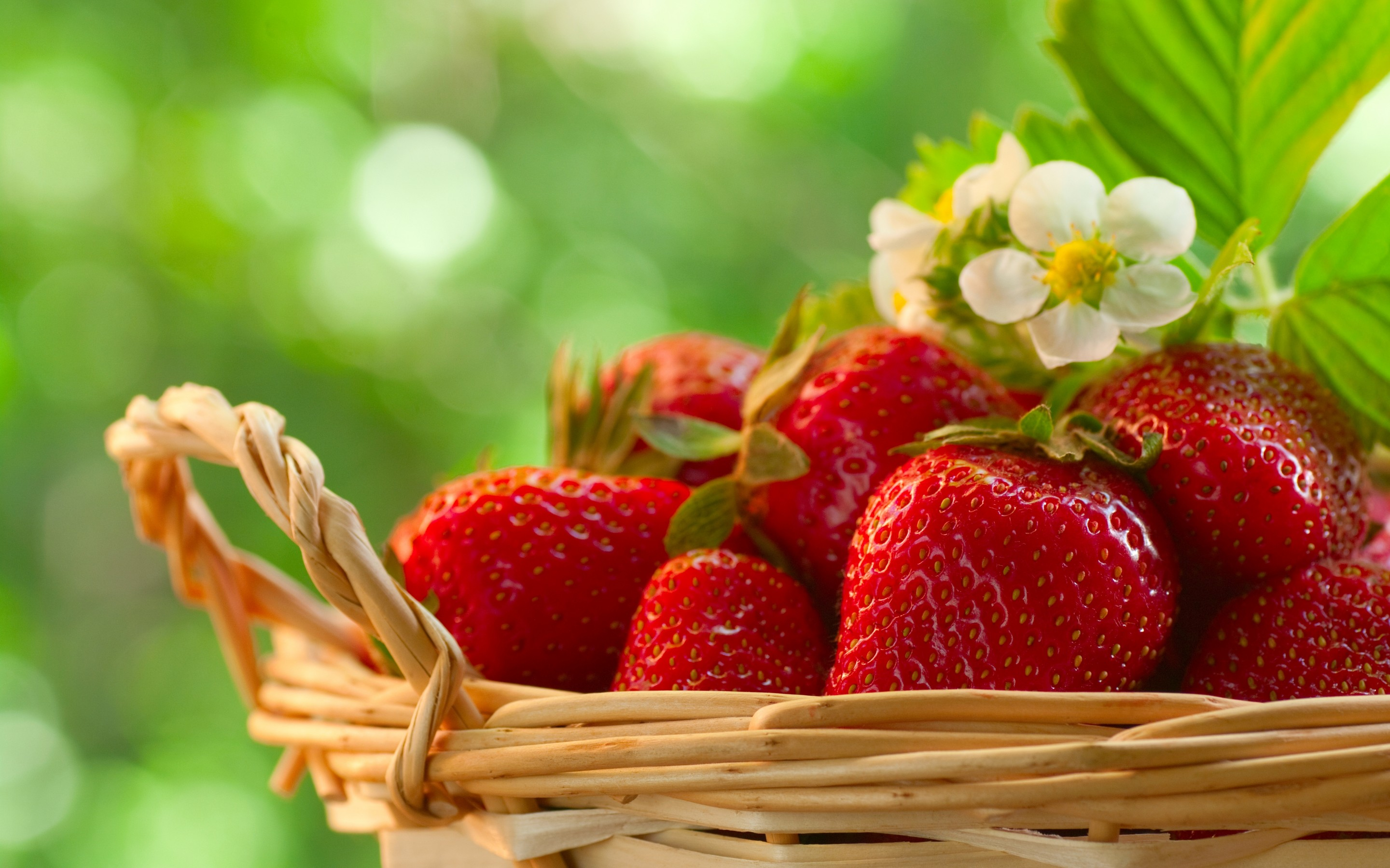 435 strawberry hd wallpapers backgrounds wallpaper abyss