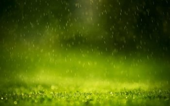 Fotografie - Rain Wallpapers and Backgrounds ID : 414975