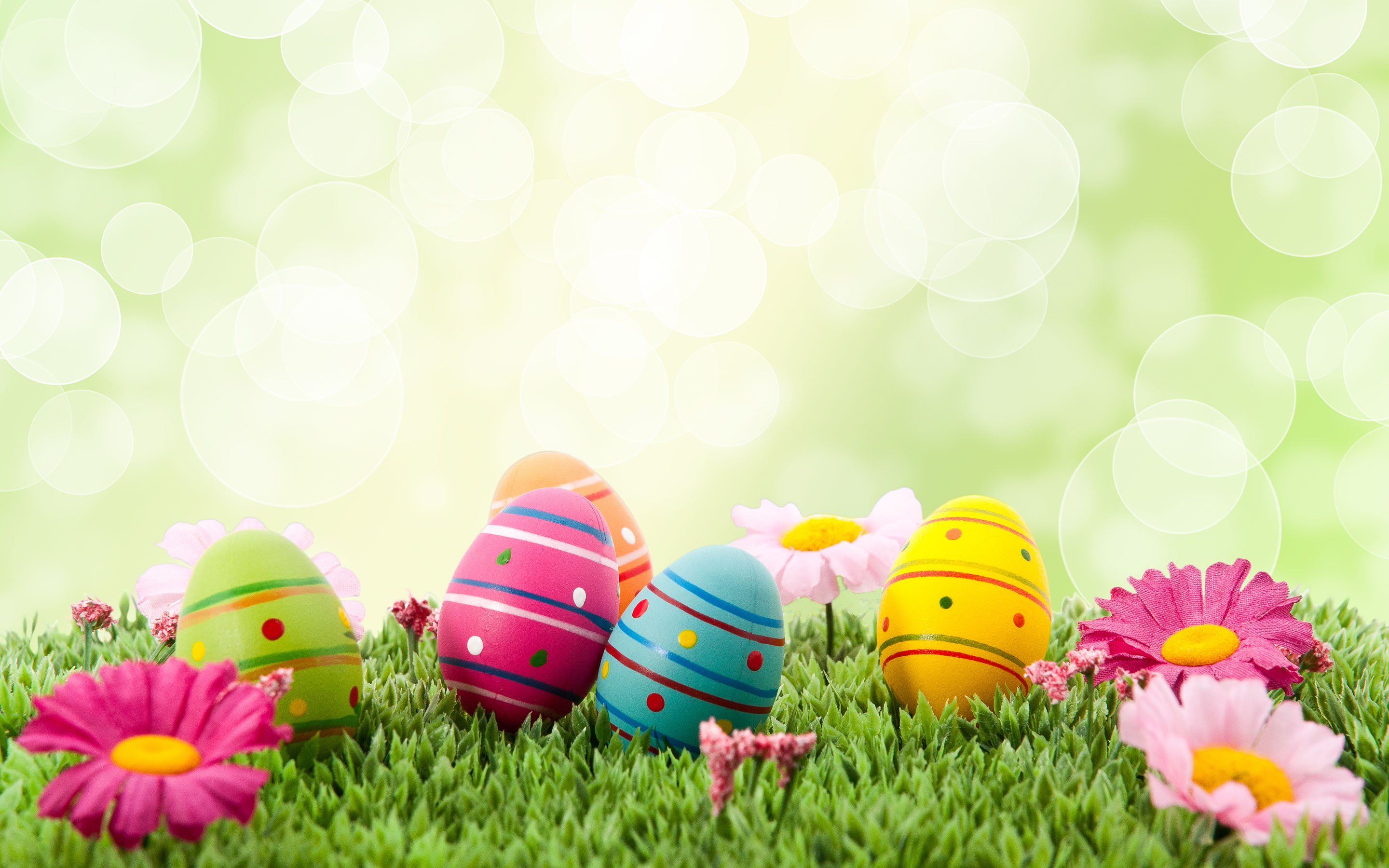 Easter Wallpaper Easter HD Wallpapers