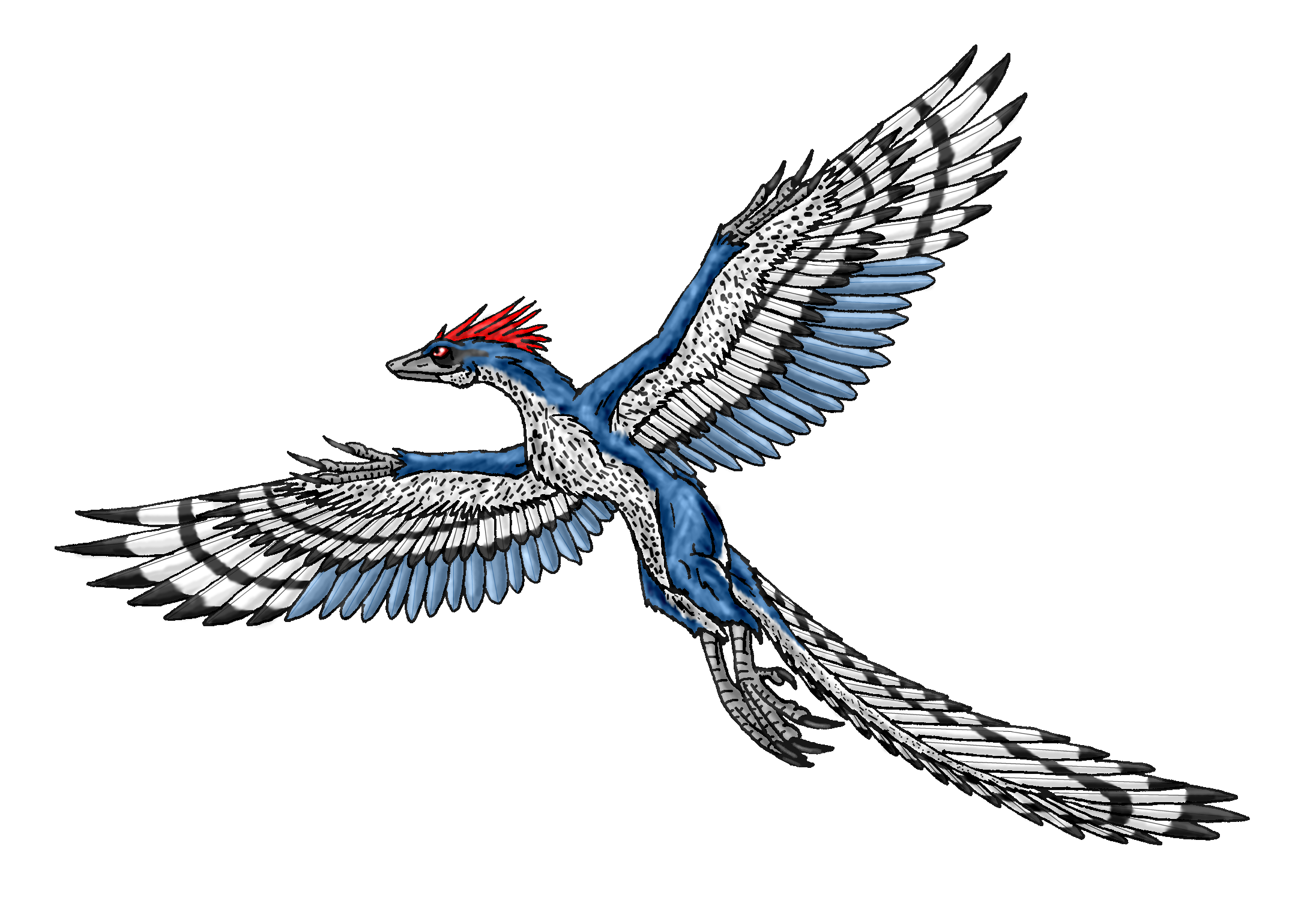 8 Archaeopteryx HD Wallpapers