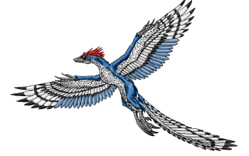 Animal - Archaeopteryx Wallpapers and Backgrounds ID : 415942