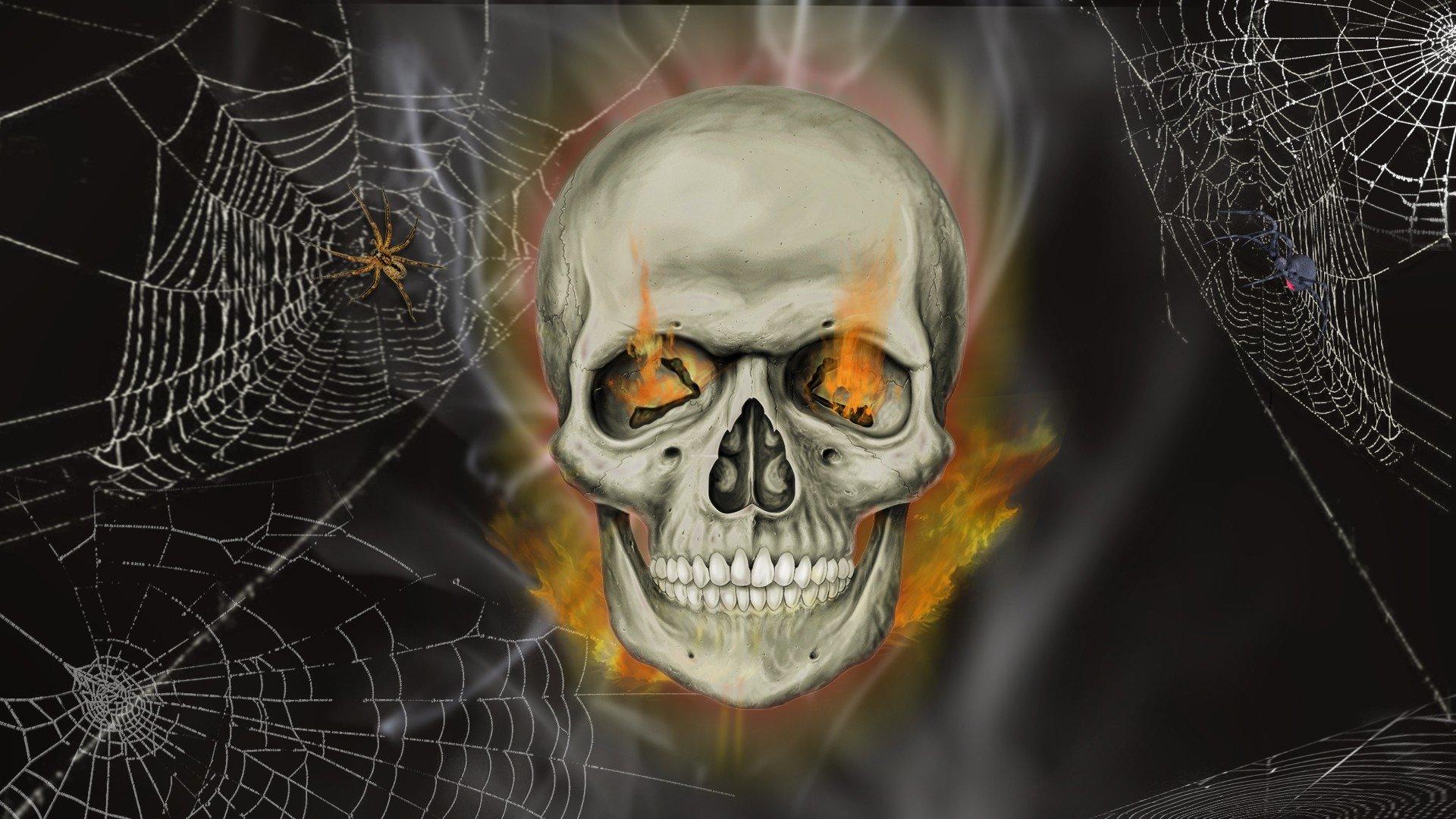 skull hd wallpaper background image 1920x1080 id