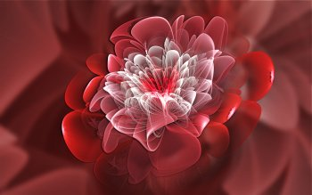 Abstrakt - Fractal Wallpapers and Backgrounds ID : 416888