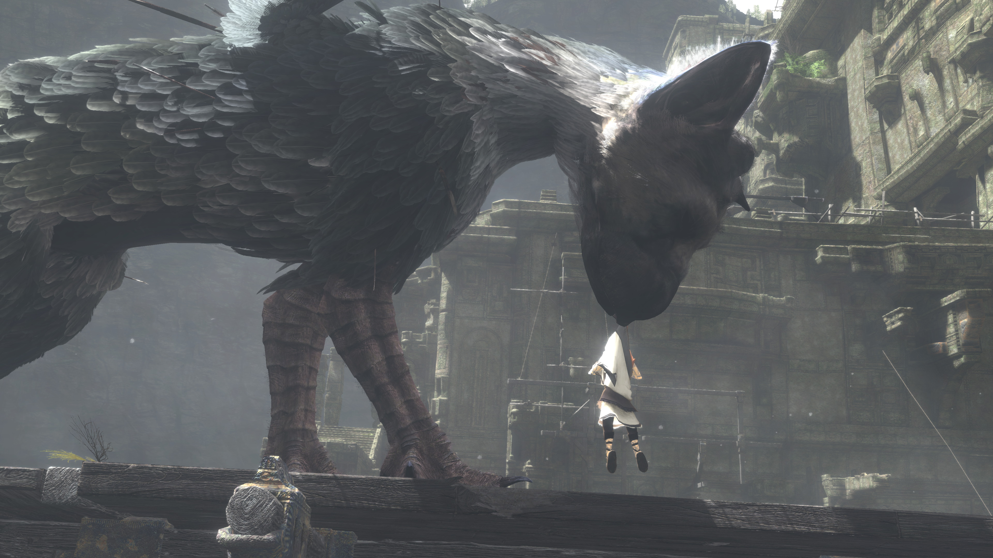20 The Last Guardian Hd Wallpapers Background Images Wallpaper