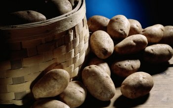 Food - Potato Wallpapers and Backgrounds ID : 420024