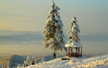 Photography - Winter Wallpapers and Backgrounds ID : 420589