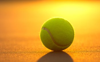 Sports - Tennis Wallpapers and Backgrounds ID : 421343