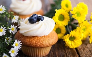 Alimento - Cupcake Wallpapers and Backgrounds ID : 421989
