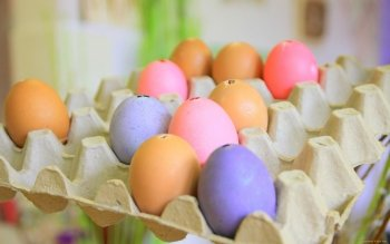 Alimento - Egg Wallpapers and Backgrounds ID : 422469