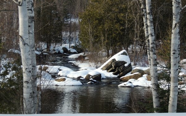 Earth Winter River Nature HD Wallpaper   Background Image