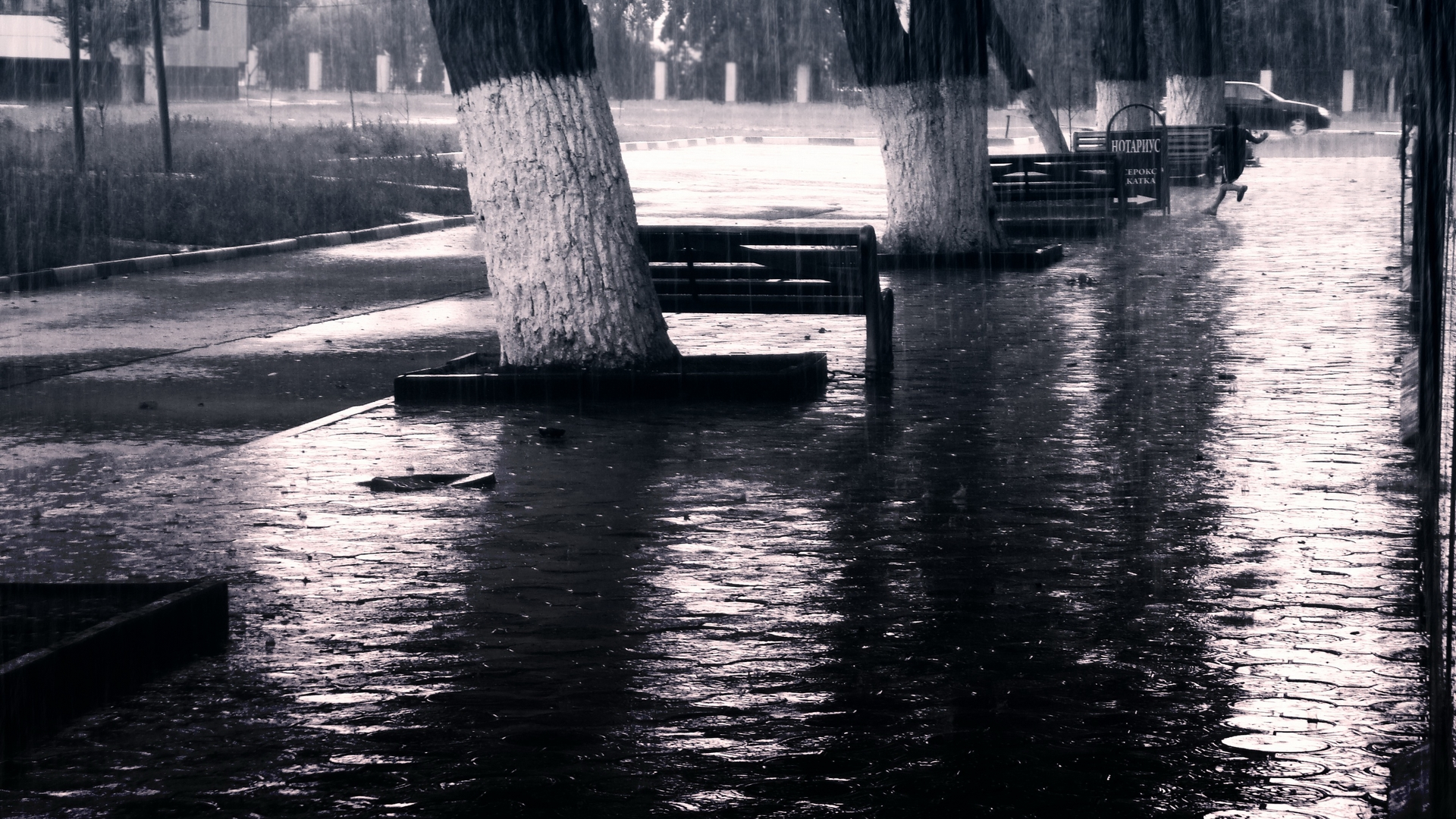 Rain Full HD Wallpaper and Background | 1920x1080 | ID:425801