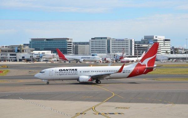 Vehículos Boeing 737 Aeronaves Boeing Avión Qantas Airport Sídney Fondo de pantalla HD | Fondo de Escritorio