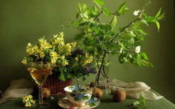 Photography - Still Life Wallpapers and Backgrounds ID : 426249