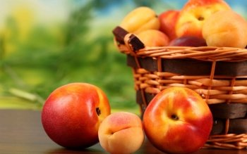 Food - Peach Wallpapers and Backgrounds ID : 426545