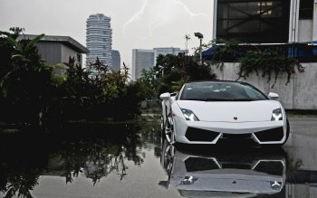Vehicles - Lamborghini Wallpapers and Backgrounds ID : 426653