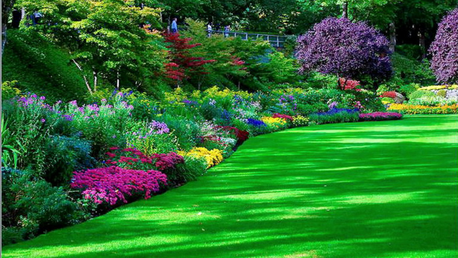 Man Made Garden Park Wallpaper A