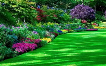 Man Made - Garden Wallpapers and Backgrounds