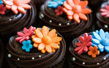 Food - Cupcake Wallpapers and Backgrounds ID : 431466