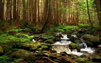 Earth - Stream Wallpapers and Backgrounds ID : 432525