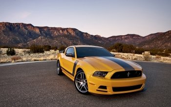 Voertuigen - Ford Mustang Shelby Wallpapers and Backgrounds ID : 432713