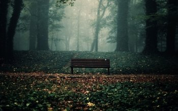 Man Made - Bench Wallpapers and Backgrounds ID : 432795