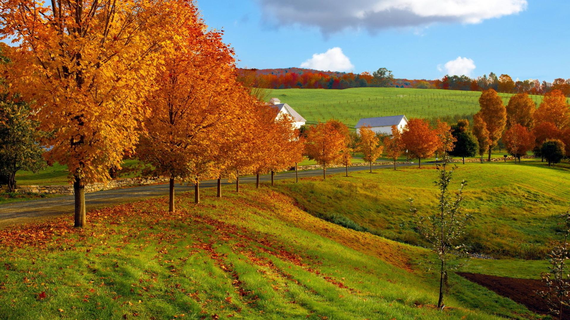 Landscape HD Wallpaper | Background Image | 1920x1080 | ID ...