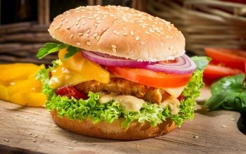 Food - Burger Wallpapers and Backgrounds ID : 433534