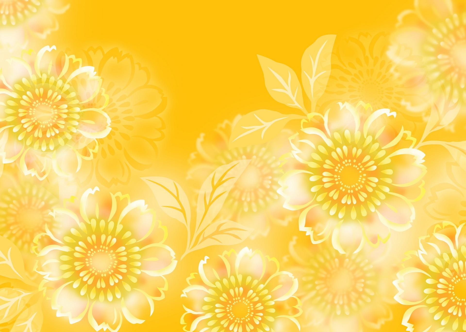 Flower Hd Wallpaper Background Image 1920x1371 Id