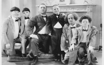 HD Quality Wallpaper   Collection: TV Show, 488x332 The Three Stooges