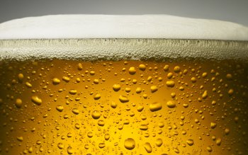 Food - Beer Wallpapers and Backgrounds ID : 437743