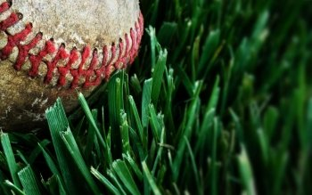 Sports - Baseball Wallpapers and Backgrounds ID : 441191