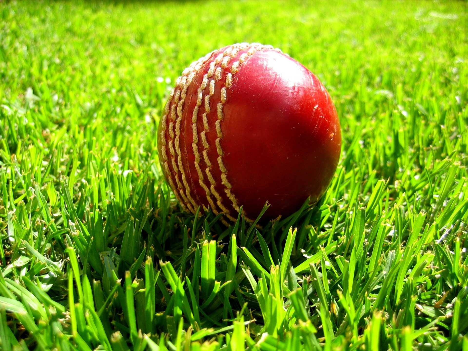 Sports cricket images