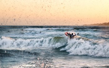 Deporte - Surfing Wallpapers and Backgrounds ID : 442199