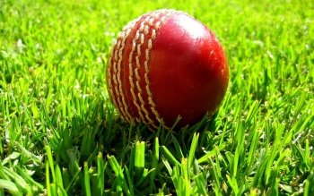 Sports - Cricket Wallpapers and Backgrounds ID : 442881