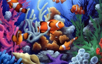 Animal - Clownfish Wallpapers and Backgrounds ID : 444118