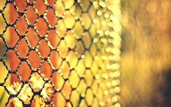 Man Made - Fence Wallpapers and Backgrounds ID : 450955