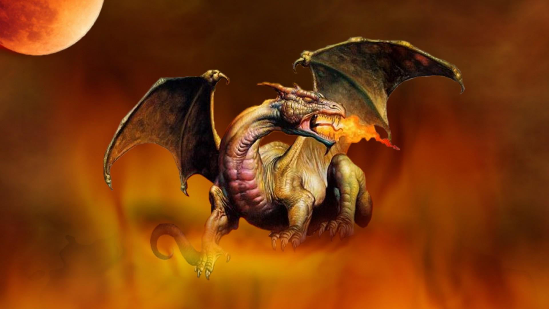 Drachen Full HD Wallpaper And Hintergrund