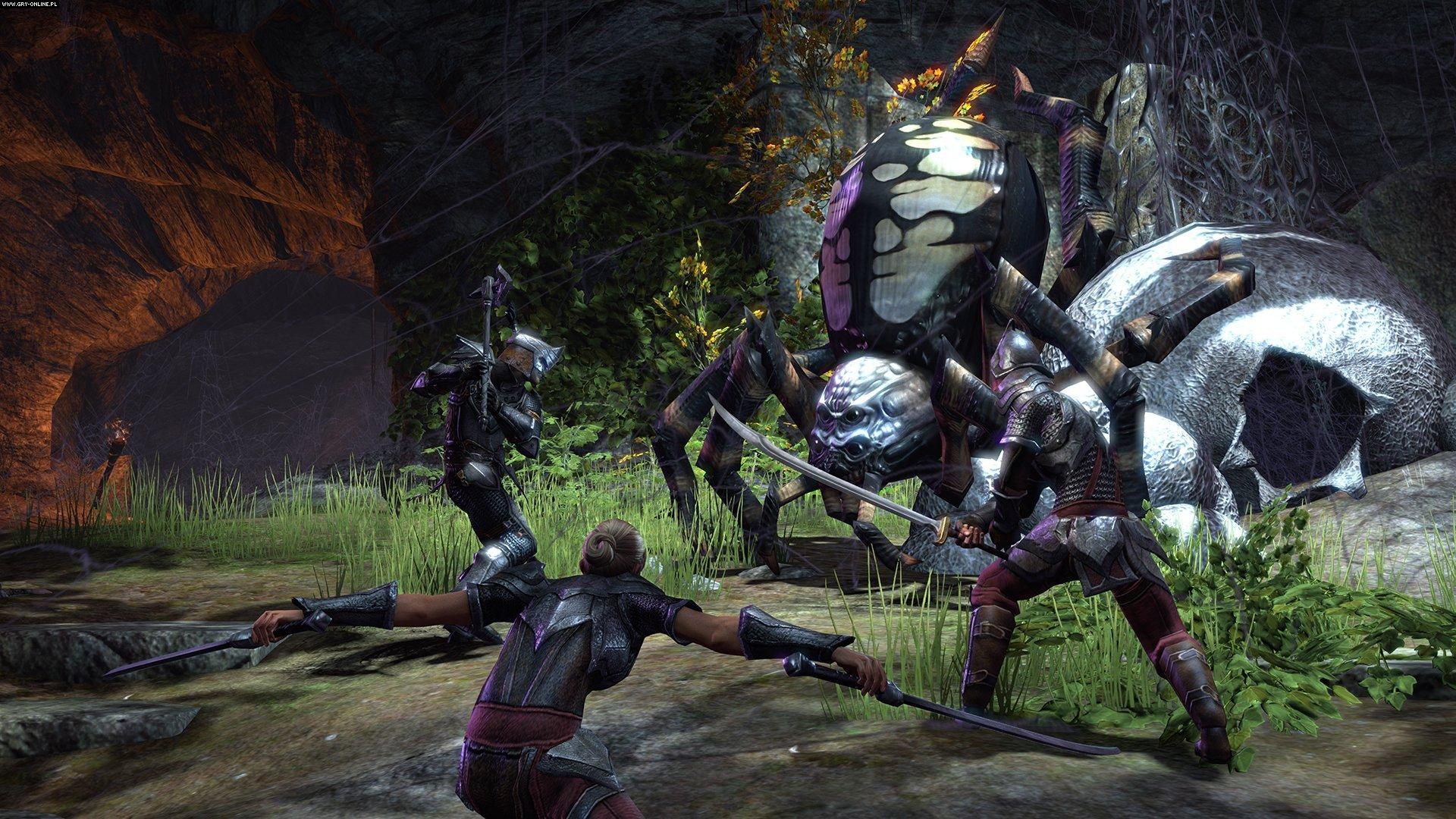 The Elder Scrolls Online Full HD Wallpaper and Background